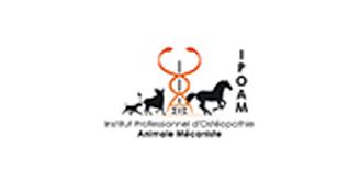 arthrose, ostéopathe animalier mécaniste équine, osthéopathe, ostéopathe équin